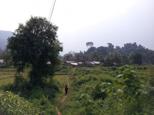 Approaching the village through the jungle