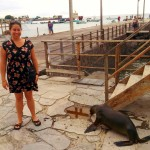 People and sea lions co-exist side-by-side