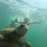 SCUBA diving with a Galapagos turtle