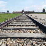 Railroad lines leading in to Birkenau