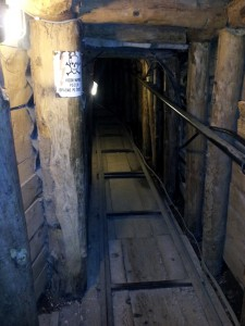 Part of Tunnel still intact today